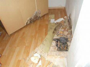 Häufige Bauschäden: Hausschwamm im Holzfußboden (nichtunterkellert)